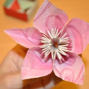 Origami para niños!!!